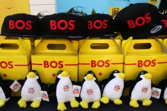 Bos Cape Crown day 2-2