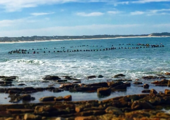 Paddle Out at Seals for Dave Fish – photo Kai Linder